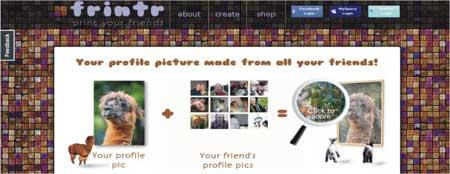 mosaico fotos rede sociais